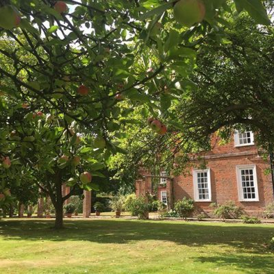 House and Gardens 37